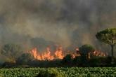Violent incendie sur la Côte d'Azur : troisième jour de lutte des pompiers