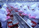 Les exportations de produits aquatiques atteignent 4,88 milliards d'USD en sept mois