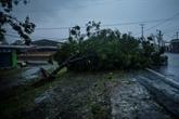 L'ouragan Grace rétrogradé en tempête tropicale après avoir touché terre au Mexique