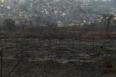 Brésil : un incendie dévaste un parc naturel près de Sao Paulo