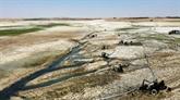 Syrie : sécheresse et géopolitique menacent les riverains du mythique Euphrate