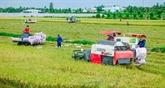 Aide australienne au développement agricole au Vietnam