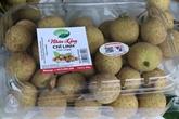 Hai Duong commence la récolte des longanes destinés à l'exportation