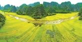 Ninh Binh ambitionne de devenir une destination majeure