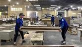Les exportations nationales de bois ont considérablement augmenté