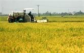 Thai Binh : résultats économiques encourageants
