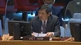 Le Vietnam appelle les parties concernées au Yémen à reprendre le dialogue