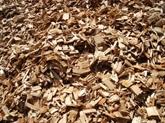 Plus d'un milliard d'USD d'exportation de copeaux de bois