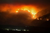Un incendie dévastateur sous contrôle dans le Sud de l'Espagne
