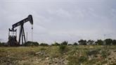 Le pétrole se stabilise au plus haut depuis presque un mois et demi