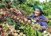 Agriculture : le Vietnam et l'Inde veulent renforcer les échanges commerciaux