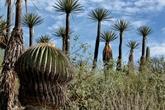 L'UNESCO annonce 20 nouvelles réserves de biosphère