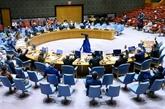 Le Vietnam œuvre avec l'ONU pour relever les défis mondiaux