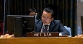Le Vietnam souligne la nécessité de lutter contre le commerce illégal d'armes