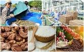 Promouvoir la production et l'écoulement des produits agricoles