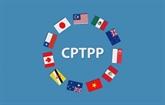 Le Vietnam prêt à partager ses informations et expériences sur l'adhésion au CPTPP