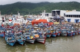 Le typhon Dianmu sème la désolation dans plusieurs provinces