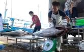 Impact du COVID-19sur l'exportation de produits aquatiques
