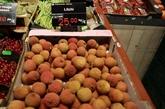 Le Vietnam et la Belgique accélèrent leurs importations de produits agricoles