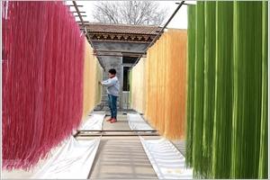 Nouilles colorées