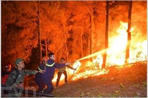 De graves incendies de forêts éteignent dans le Centre du Vietnam