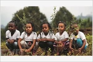 LÉthiopie à lheure de lécologie