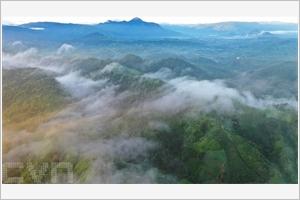Laube sur les hautes terres de Quang Tri