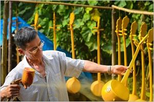 Le dàn tinh un instrument musical des Tày et Nùng