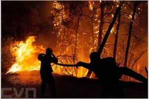 Les pompiers bataillent contre des incendies aux portes dAthènes