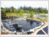 Des bassins d'aquaculture dans l'arrière-dune