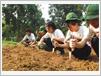 On y apprend aussi à biner la terre... avec du matériel pas forcément ad hoc...
