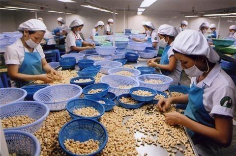 Inde marché potentiel pour les marchandises vietnamiennes