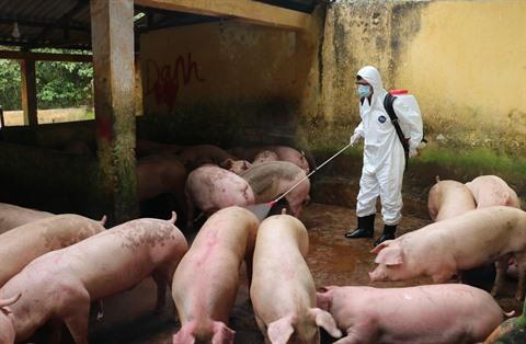 PPA  La FAO ne recommande pas la déclaration de létat durgence