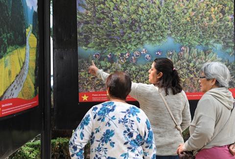 Une exposition photographique sur le Vietnam au Mexique