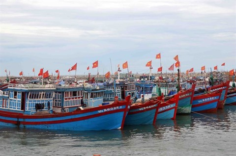 Le Vietnam fait des efforts pour éradiquer la pêche INN selon le site web Foreign Affair Asia