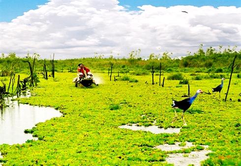 Parc national de U Minh Thuong, province de Kiên Giang