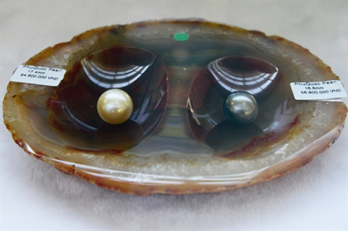 La qualité des perles de Phu Quôc est parmi la meilleure de la planète, selon les experts.