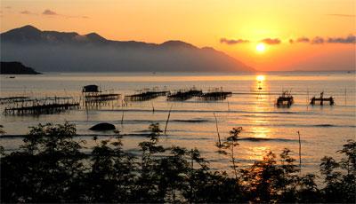 Le marais de Nha Phu