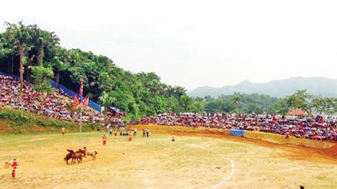 La fête attire des milliers de personnes venues de diverses provinces et villes du pays, et même de l'étranger