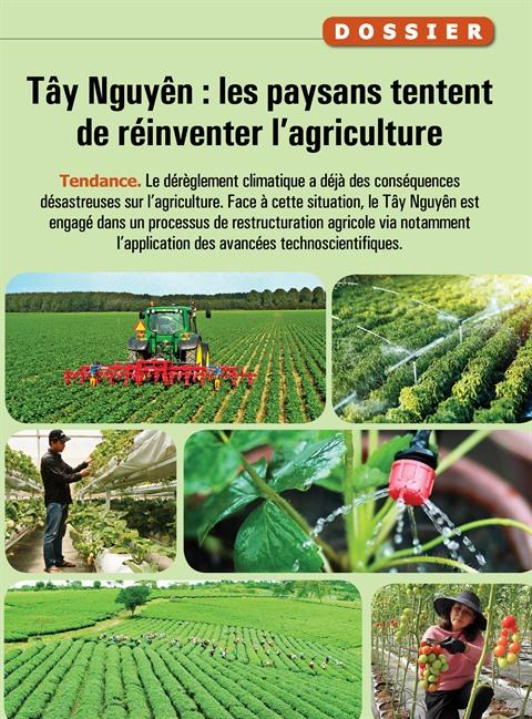 Dérèglement climatique : l'agriculture du Tây Nguyên en danger