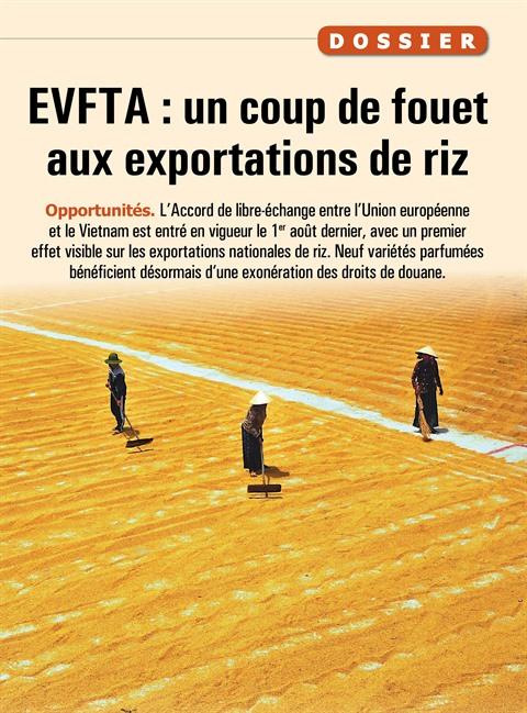 EVFTA : un coup de fouet aux exportations de riz