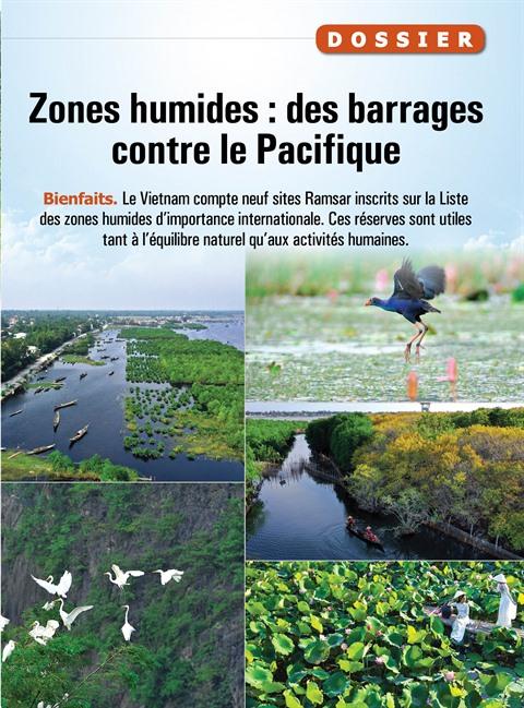 Zones humides : des barrages contre le Pacifique