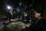 Le benjoin, une résine apportant de nouveaux revenus aux habitants de Van Bàn
