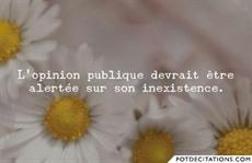 Opinion - Opinion publique