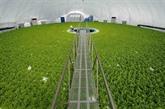Éveiller les potentiels de lagriculture high-tech