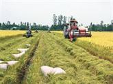 Lagriculture durable et la sécurité alimentaire - une des priorités dans la coopération au sein de lAPEC