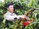 Bond des exportations nationales de café en Nouvelle-Zélande