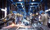 Vietnam-Ukraine : Dông Nai et Ternopil coopèrent pour le développement industriel