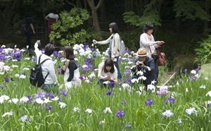 Hausse spectaculaire du nombre de touristes vietnamiens au Japon en dix ans