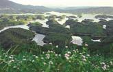 Tà Ðùng, chef-œuvre de la nature au Tây Nguyên